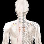 Schmerztherapie mit Akupressur